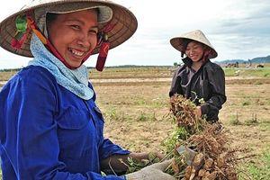 Công ước quốc tế xóa bỏ sự phân biệt đối xử đối với phụ nữ ở các vùng nông thôn