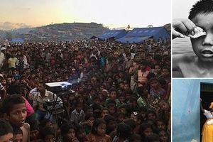Những tấm hình khiến người xem nhói tim trong cuộc thi ảnh iPhone