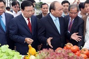 Thủ tướng Nguyễn Xuân Phúc: Tìm giải pháp mới, đột phá trong phát triển nông nghiệp
