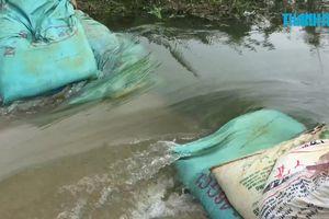 Lũ tràn đê, hàng chục hộ dân ngoại thành Hà Nội phải sơ tán trong đêm