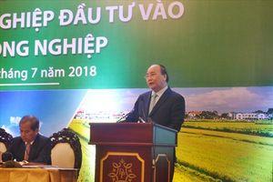 Thủ tướng: Hợp tác đưa nông sản Việt Nam vươn ra thị trường quốc tế