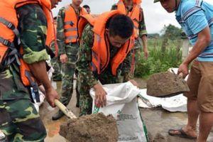Đê tả Bùi bị đe dọa nghiêm trọng, Hà Nội chủ động phương án di dời dân