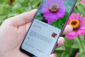 LG G7 được đánh giá cao, chụp ảnh đẹp mê ly