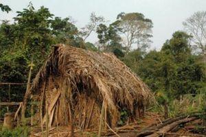 Bên trong thế giới đơn độc của người sống sót duy nhất bộ lạc Amazon