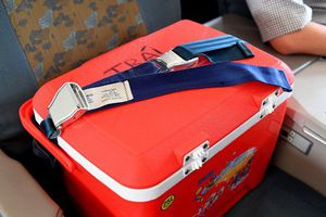 Tạng hiến cứu người 'ngồi' hạng thương gia trên máy bay