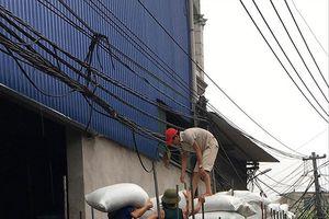 Phế liệu nhập lậu về cảng biển: Có sự tiếp tay