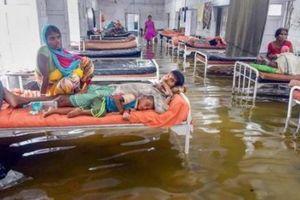 600 người dân ở Ấn Độ thiệt mạng do lũ lụt kinh hoàng