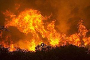 Cháy rừng ở Mỹ làm 6 người thiệt mạng và hàng trăm ngồi nhà bị phá hủy