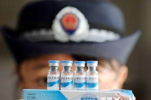 Ấn Độ cấm nhập khẩu vắcxin phòng dại của công ty Trung Quốc