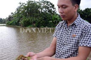 Dân 'tố' xã 'chặn' đường tiêu thoát nước làm... ruộng bị úng lụt