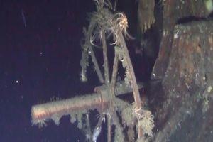Công ty phát hiện 'tàu đắm chở vàng' bị điều tra