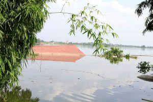 Hà Nội: Nước lụt cao hơn đỉnh lũ trận lụt lịch sử 2008