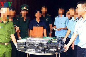 Khởi tố vụ giấu 100 bánh cocaine trị giá gần 800 tỷ đồng trong container