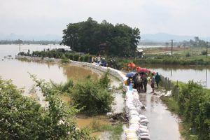Mực nước sông Bùi tại Hà Nội đang xuống chậm