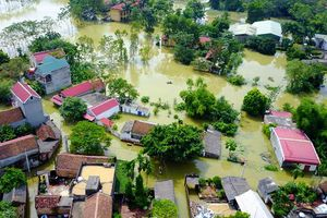 Hà Nội: Nông nghiệp thiệt hại nặng nề do mưa lũ