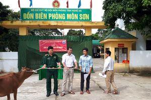 Trao bò sinh sản cho hộ nghèo ở Con Cuông