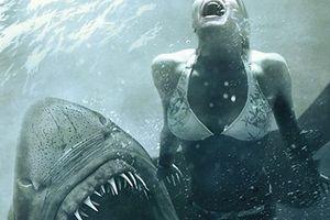 Những bộ phim về hung thần đại dương gây ám ảnh nhất lịch sử phim ảnh thế giới