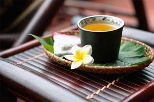 Trà thuốc dành cho người sỏi mật