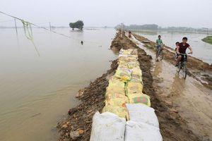 Hà Nội: Sẵn sàng xả nước để bảo vệ đê sông Bùi