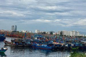 Tàu thuyền quá tải khu neo đậu tránh trú bão ở Đà Nẵng