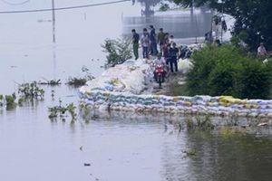 Hà Nội: Nước sông Bùi vẫn trên báo động 3, hơn 3.600 hộ dân bị ngập