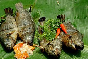 Ăn cá rô đồng mà không biết những điều này thì hối hận cả đời!