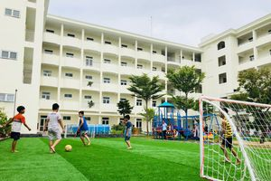 Đà Nẵng: Chuyển giao chương trình giáo dục thể chất theo phương pháp Nhật Bản