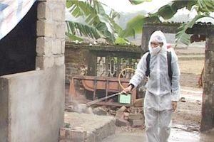 Nguy cơ dịch bệnh mùa mưa lũ đe dọa sức khỏe người dân