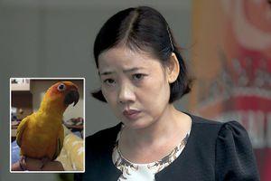 Người phụ nữ gốc Việt đi tù vì bạo hành vẹt ở Singapore