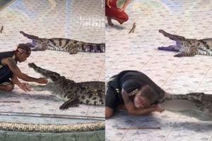 Clip: Khoảnh khắc kinh hoàng cá sấu suýt cắn đứt cánh tay người huấn luyện