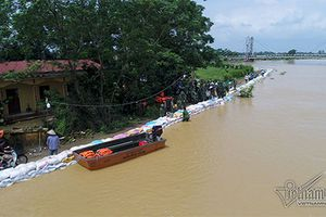 Lụt ở Chương Mỹ: Hà Nội tính kè đê sông Bùi bằng bê tông cốt thép