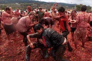 Lễ hội La Tomatina 2013 - Cuộc 'đại chiến cà chua'
