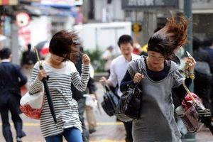 Siêu bão Wipha tràn qua Nhật Bản, ít nhất 7 người chết