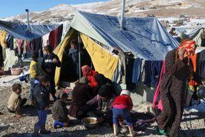 LHQ cắt viện trợ của 1,7 triệu người tị nạn Syria