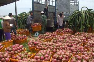 Cơ hội vàng cho nông sản xuất khẩu