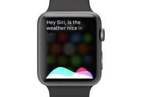 Tắt chức năng 'Hey Siri' trên Apple Watch