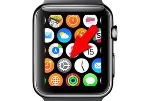 Điều chỉnh cảm biến haptic trên Apple Watch