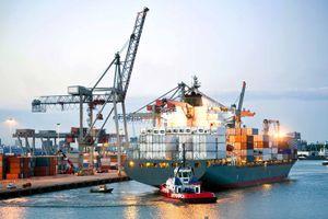 Nâng cao năng lực vận tải biển - Kỳ III: Tái cơ cấu, hiện đại hóa đội tàu