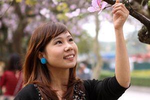 Say đắm vẻ đẹp hoa ban giữa lòng Hà Nội