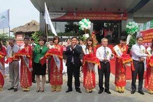 Đa cấp Liên kết Việt: Không cảnh báo dân vì áp dụng luật máy móc