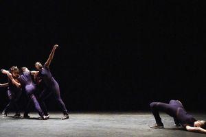 Thưởng thức tài năng của biên đạo múa người Pháp gốc Việt