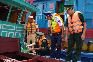 Quảng Ninh: Bắt vụ nhập lậu hơn 4 ngàn con cá giò giống qua biên giới