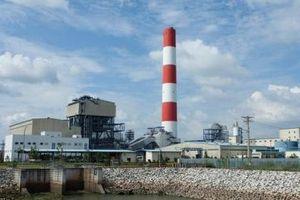 Xem xét tiến độ thực hiện các nhà máy nhiệt điện tại Long An