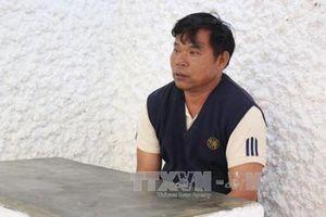 Bắt đối tượng cầm đầu vụ phá rừng quy mô lớn tại Lâm Đồng