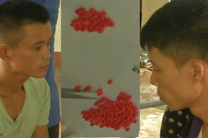 BĐBP Quảng Trị triệt phá đường dây vận chuyển ma túy từ Lào về Việt Nam