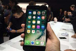 Thực hư mác 'chính hãng' iPhone bán tại Việt Nam