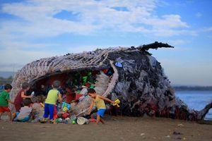 Cá voi 'khủng' chết thảm, ai cũng sốc khi thấy thứ trong miệng nó