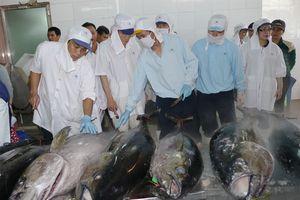 Tại sao châu Âu 'rút thẻ vàng' với hải sản Việt Nam?