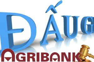 Agribank rao bán tài sản của công ty Tân Tri Kỷ giá 5,4 tỷ đồng