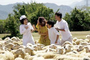 Nhà sản xuất phim Việt: 'Tết này chỉ mong không lỗ'